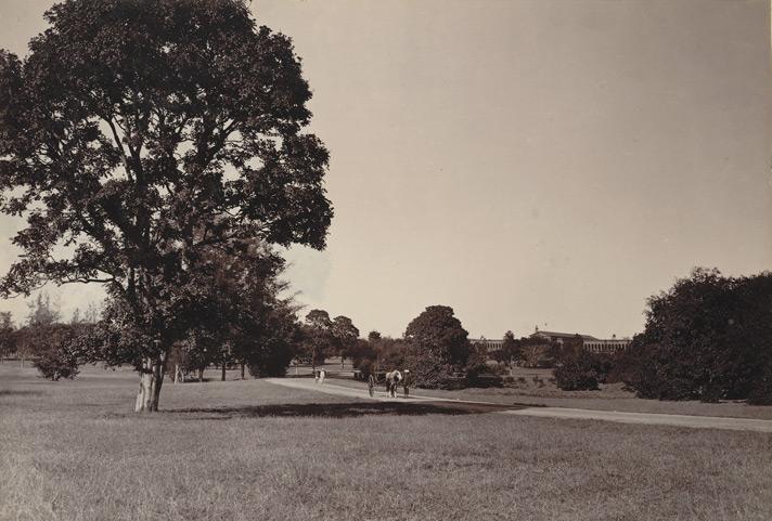 Cubbon Park(1890)