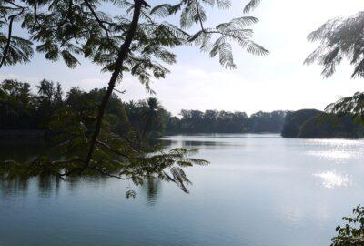 A lake in Bengaluru