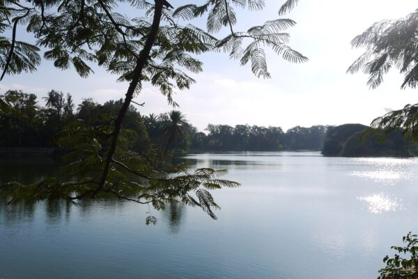 A lake in Bengaluru
