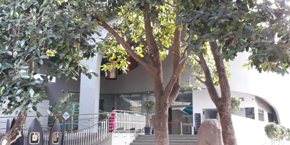 Bengaluru IQ – Quiz 1